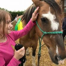 Fundraiser or grant bid writer for a charity supporting children to access equine assisted therapeutic learning