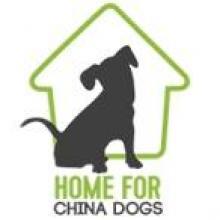 Trustee for an Animal Welfare Charity