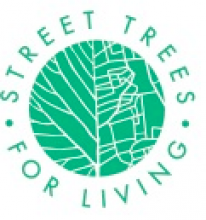 Treasurer Trustee for a dynamic charity in South East London bringing trees to the streets.