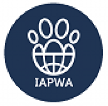 Administrative Assistant (Volunteer) for an animal charity